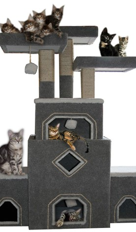 Our Cat Trees And Cat Furniture Are Handmade Cat Condos