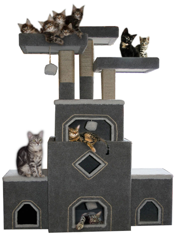 Our cat trees and cat furniture are handmade cat condos for Castle cat tower