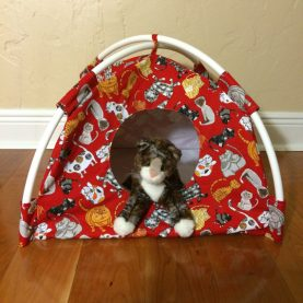 1-Every-Cat-Cartoon-Kitties-Modern-Cat-Tent