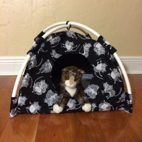 Gray-Tabby-Yoga-Kitties-Modern-Cat-Tent